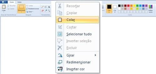 colar imagem do print screen